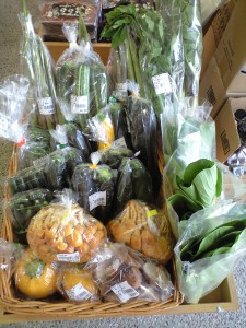 201106長野産野菜